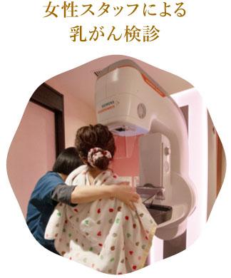 女性スタッフによる乳がん検診